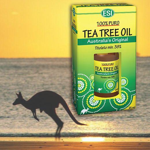 100%-os gyógyszerkönyvi tisztaságú Ausztrál TEAFA olaj
